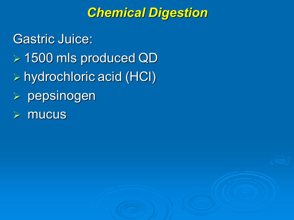 Chemical Digestion Gastric Juice:  1500 mls produced QD  hydrochloric acid (HCl)  pepsinogen  mucus