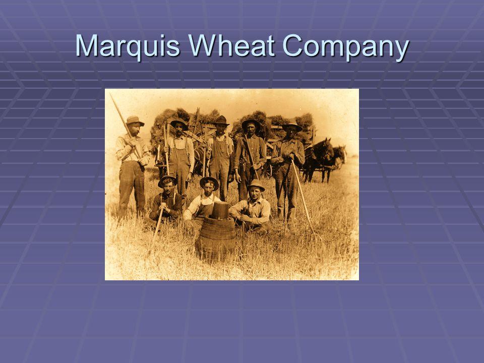 Marquis Wheat Company