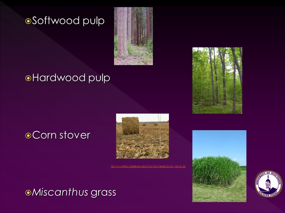  Softwood pulp  Hardwood pulp  Corn stover  Miscanthus grass http://www.energy.iastate.edu/becon/tour/tourimages/02-corn_stover.jpg