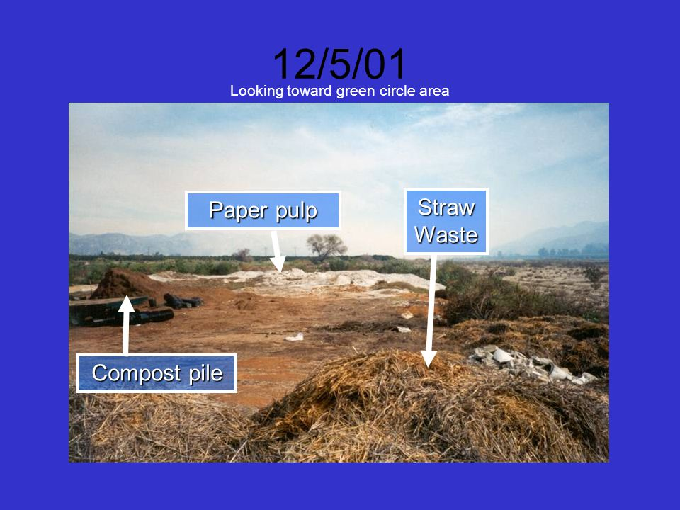 12/5/01 Looking toward green circle area Paper pulp Compost pile Straw Waste