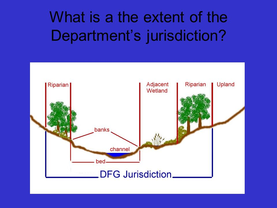 What is a the extent of the Department's jurisdiction