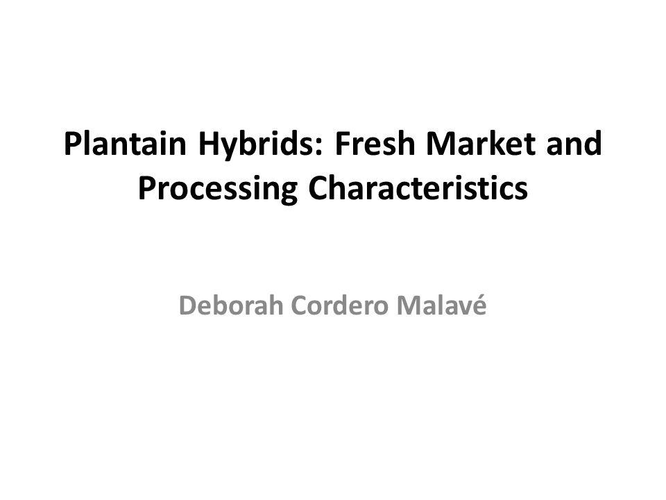Plantain Hybrids: Fresh Market and Processing Characteristics Deborah Cordero Malavé