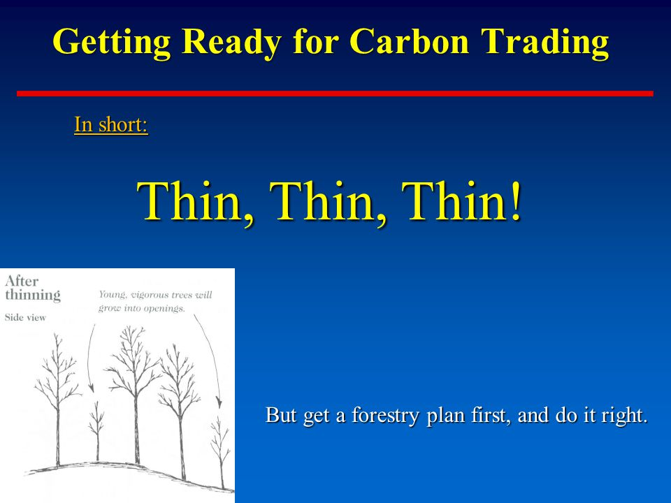 Getting Ready for Carbon Trading In short: Thin, Thin, Thin.
