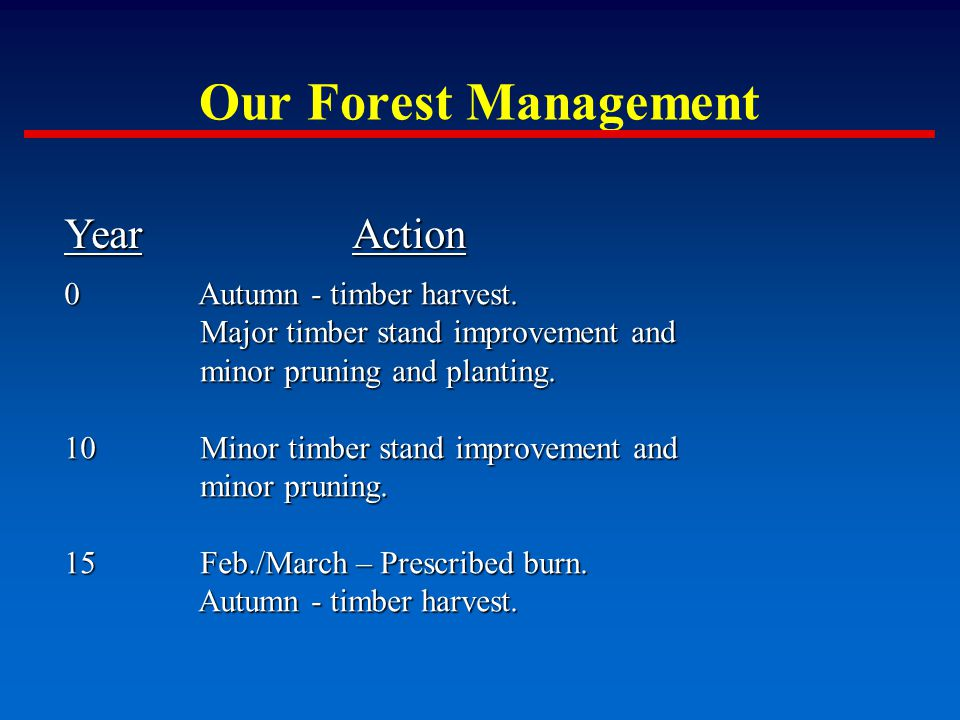 Our Forest Management YearAction 0 Autumn - timber harvest.