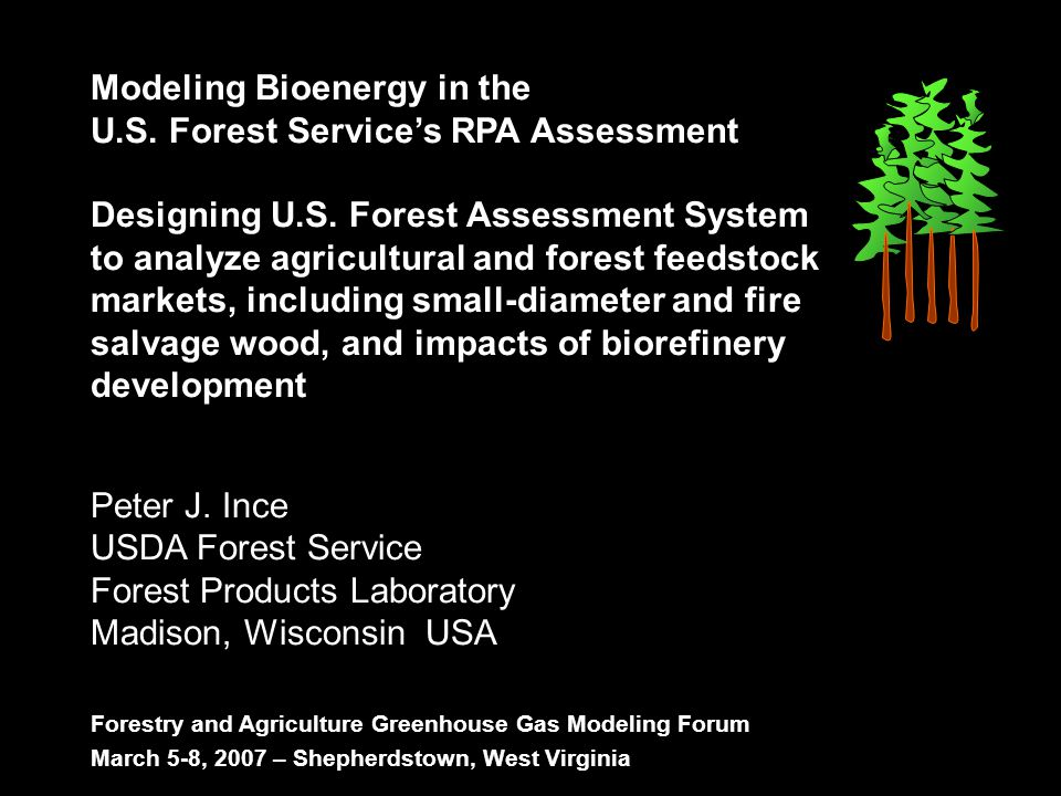 USFPM/GFPM will assess the following: Competitive outlook for wood biofuels and bioenergy in the context of all competing wood uses and global wood markets; expected U.S.