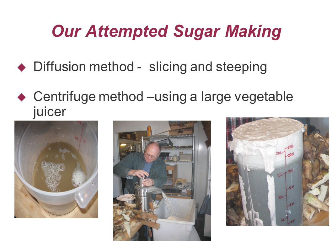 Our Attempted Sugar Making  Diffusion method - slicing and steeping  Centrifuge method –using a large vegetable juicer