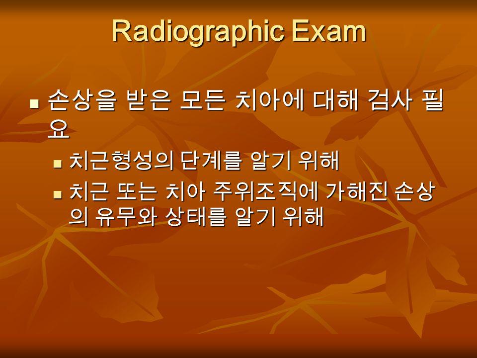 방사선 검사 Radiographic Exam