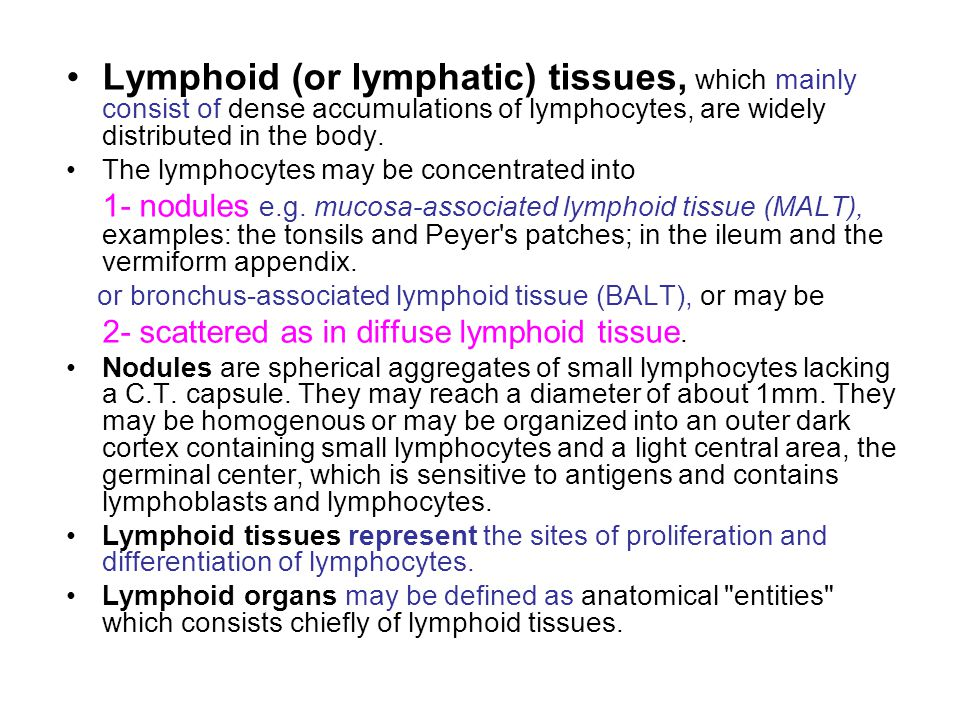 Lymphoid (or lymphatic) tissues, which mainly consist of dense accumulations of lymphocytes, are widely distributed in the body. The lymphocytes may b