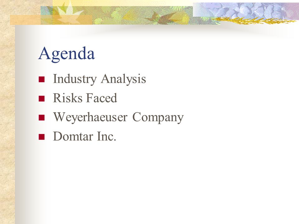 Agenda Industry Analysis Risks Faced Weyerhaeuser Company Domtar Inc.