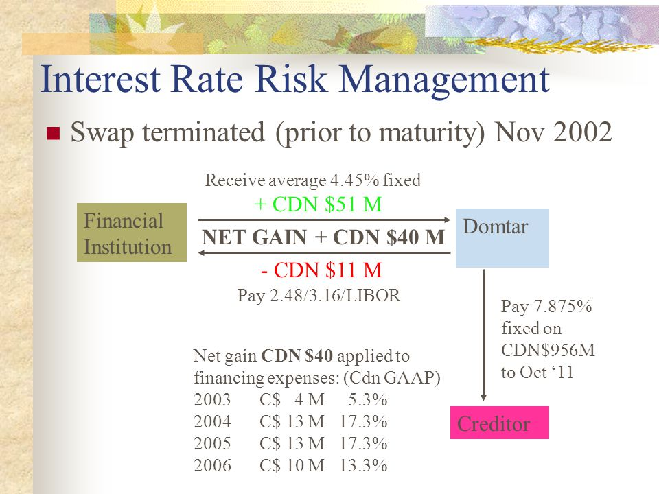 Interest Rate Risk Management Swap terminated (prior to maturity) Nov 2002 Financial Institution Domtar Creditor + CDN $51 M Net gain CDN $40 applied