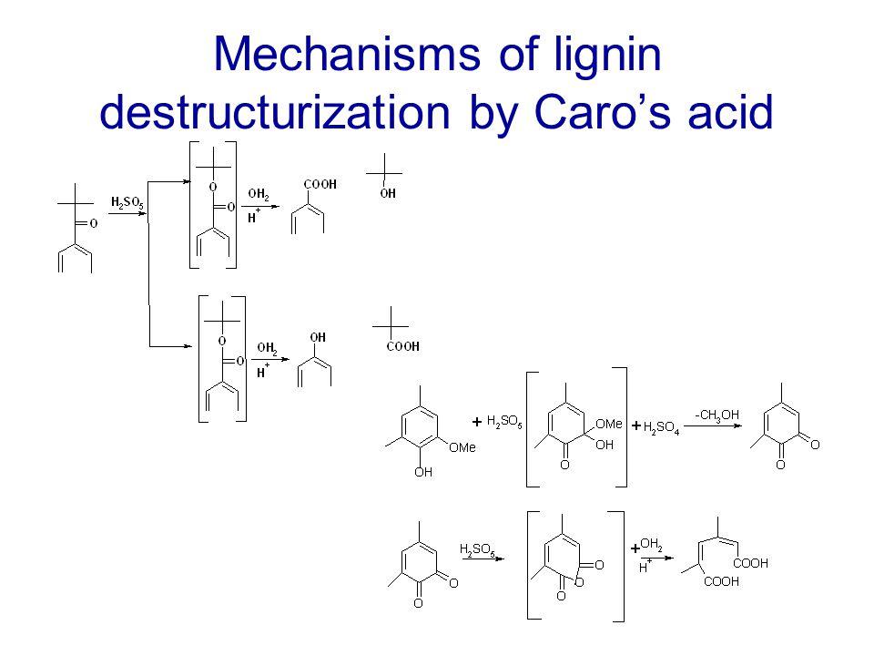 Mechanisms of lignin destructurization by Caro's acid