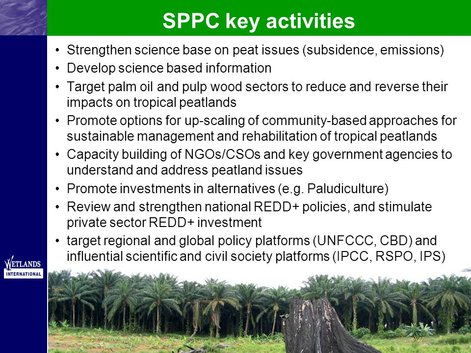 SPPC key activities Strengthen science base on peat issues (subsidence, emissions) Develop science based information Target palm oil and pulp wood sectors to reduce and reverse their impacts on tropical peatlands Promote options for up-scaling of community-based approaches for sustainable management and rehabilitation of tropical peatlands Capacity building of NGOs/CSOs and key government agencies to understand and address peatland issues Promote investments in alternatives (e.g.