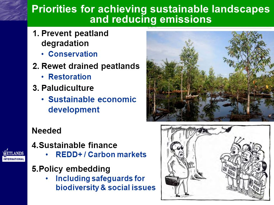 1.Prevent peatland degradation Conservation 2.Rewet drained peatlands Restoration 3.Paludiculture Sustainable economic development Priorities for achieving sustainable landscapes and reducing emissions Needed 4.Sustainable finance REDD+ / Carbon markets 5.Policy embedding Including safeguards for biodiversity & social issues