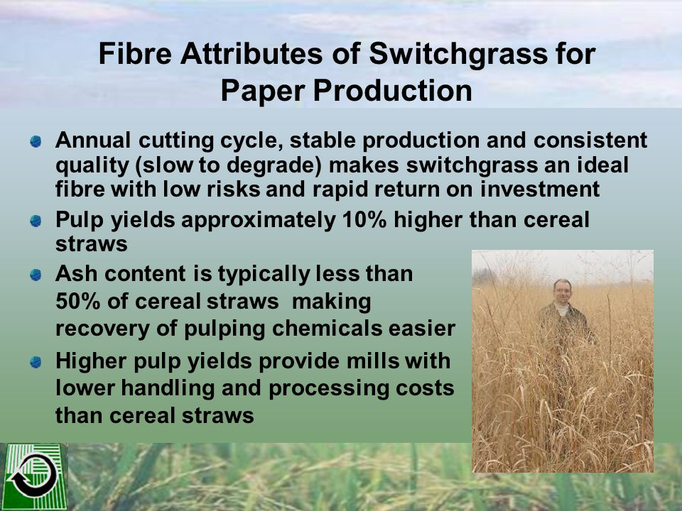 Reducing Ash Content of Perennial Grasses Use warm season (C4) Crop species which use ½ as much water as cool season (C3) species Over-wintering grasses can reduce Potassium by up to 90% Growing grasses on sandy soils can reduce silica levels Developing grasses with a high stem-to-leaf ratio