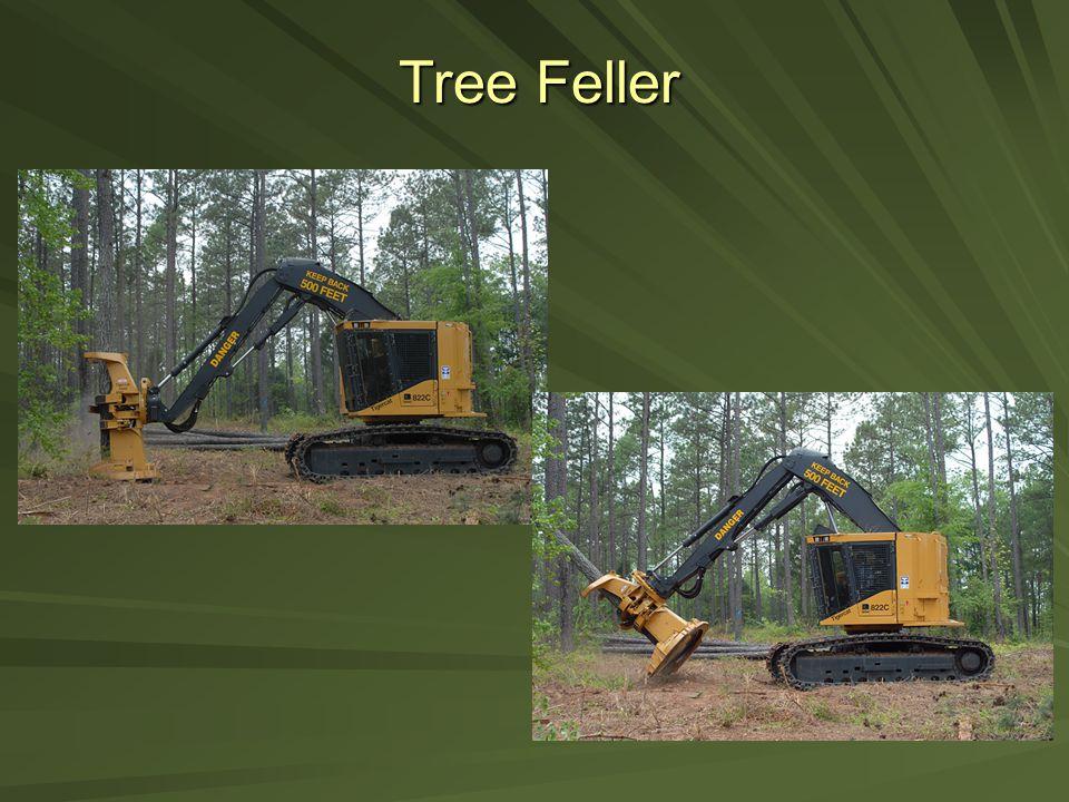 Tree Feller