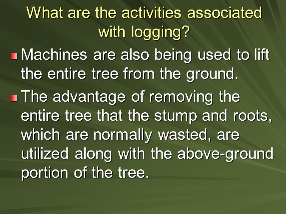 What are the activities associated with logging.