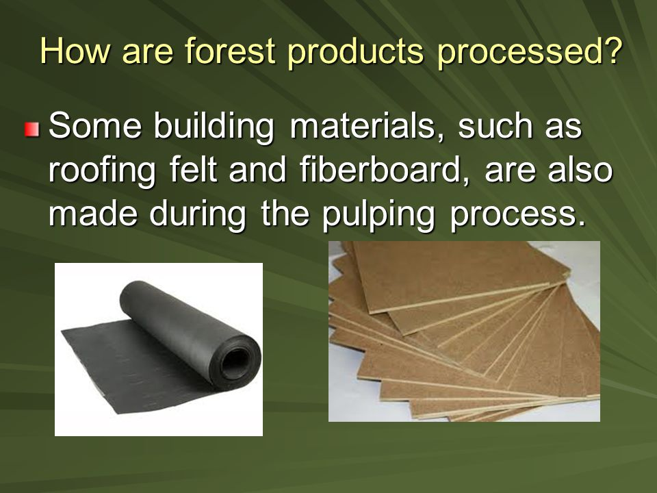 How are forest products processed.