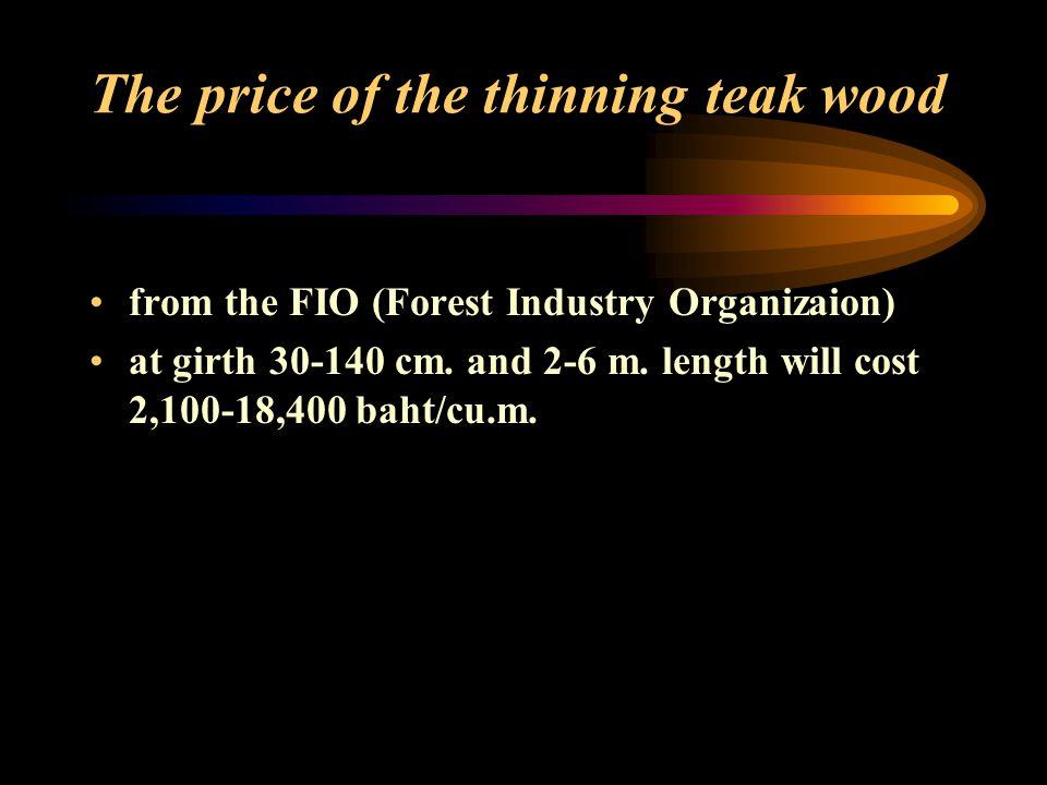 Eucalyptus wood marketing Eucalyptus aged 5 years gave wood 16.65 tons/rai.