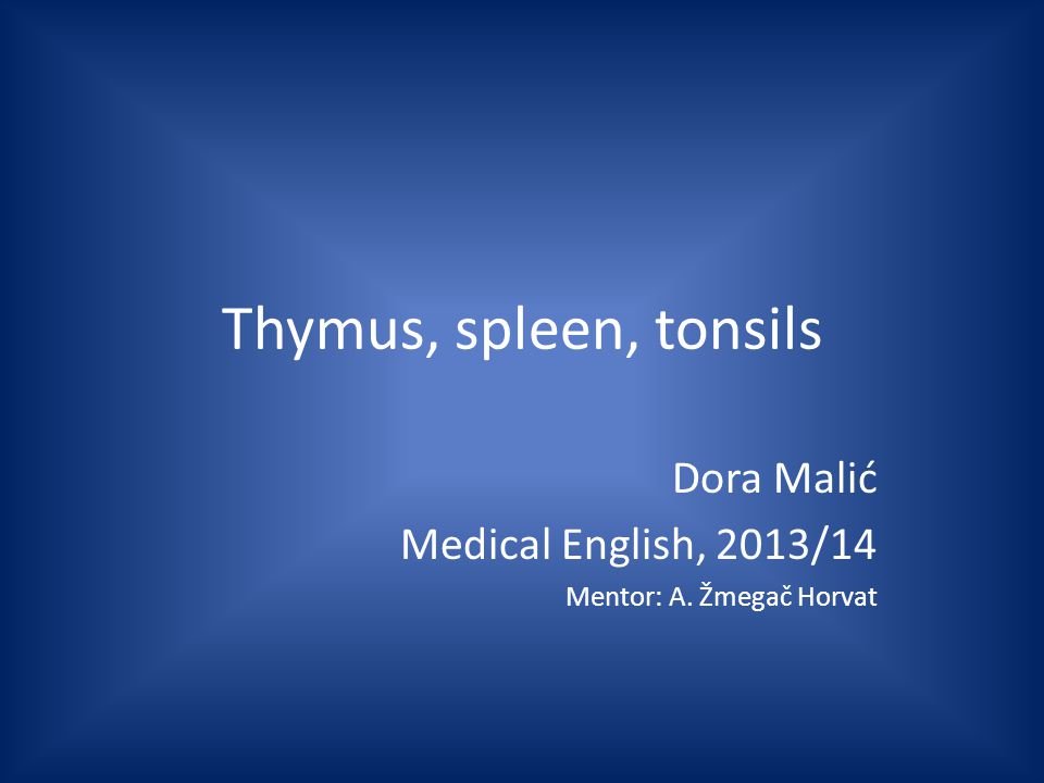 Thymus, spleen, tonsils Dora Malić Medical English, 2013/14 Mentor: A. Žmegač Horvat
