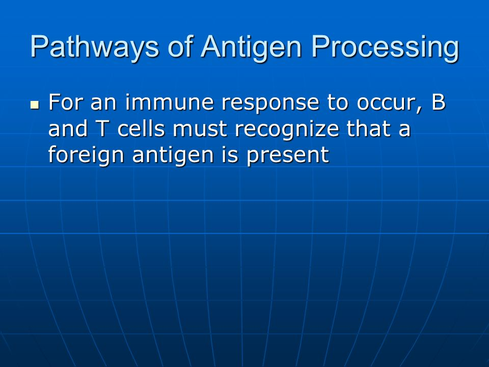 Pathways of Antigen Processing For an immune response to occur, B and T cells must recognize that a foreign antigen is present For an immune response