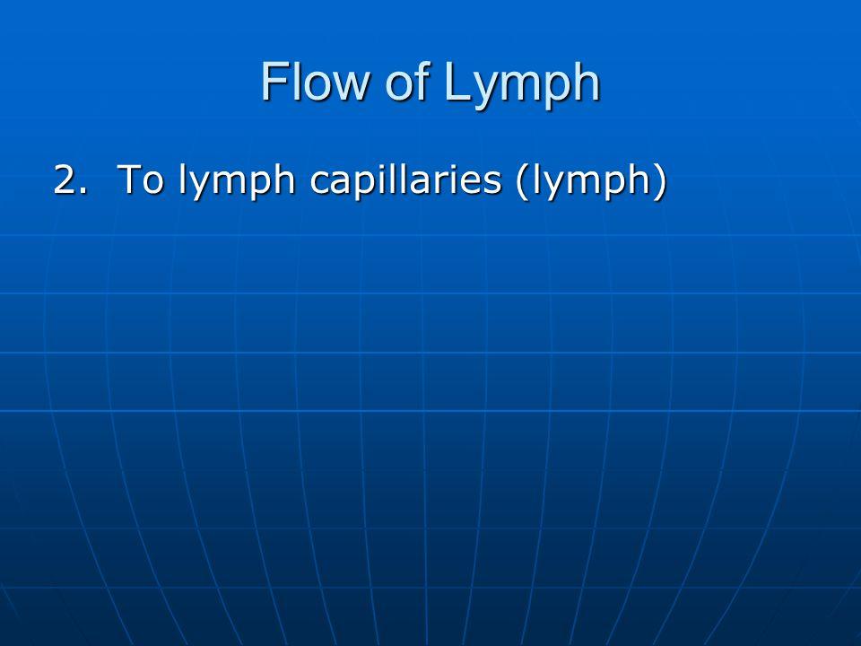 Flow of Lymph 2. To lymph capillaries (lymph)