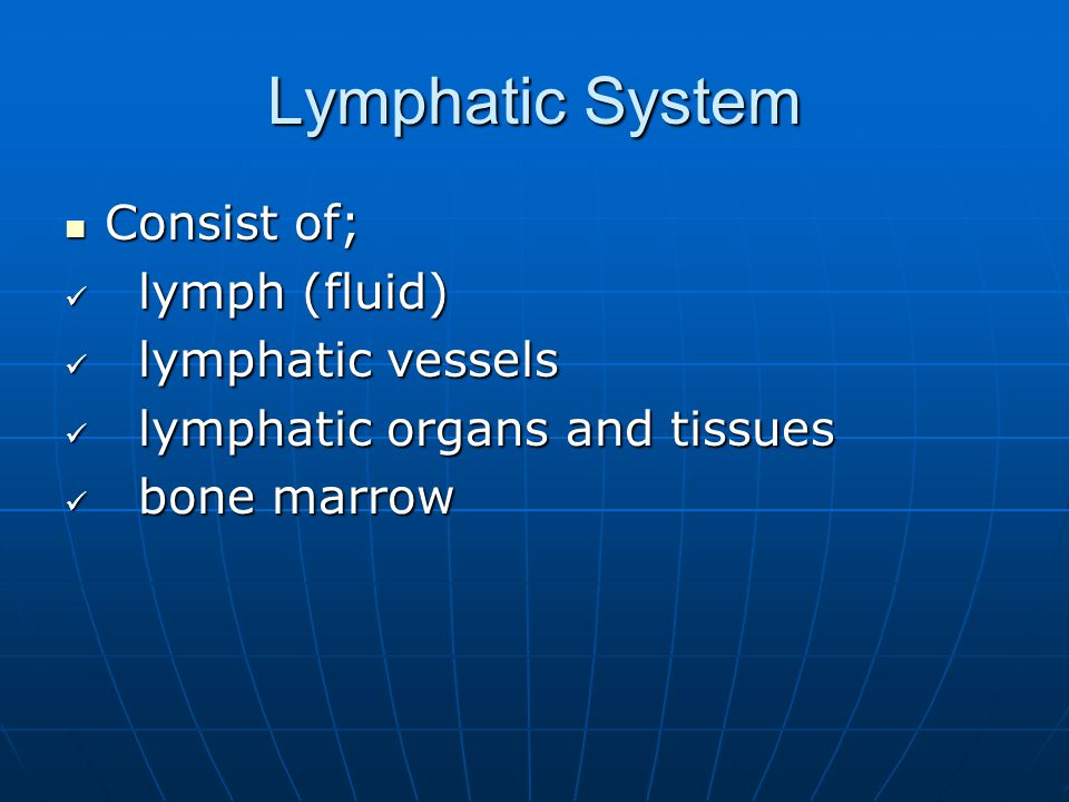 Lymphatic Capillaries 3. Portions of the spleen