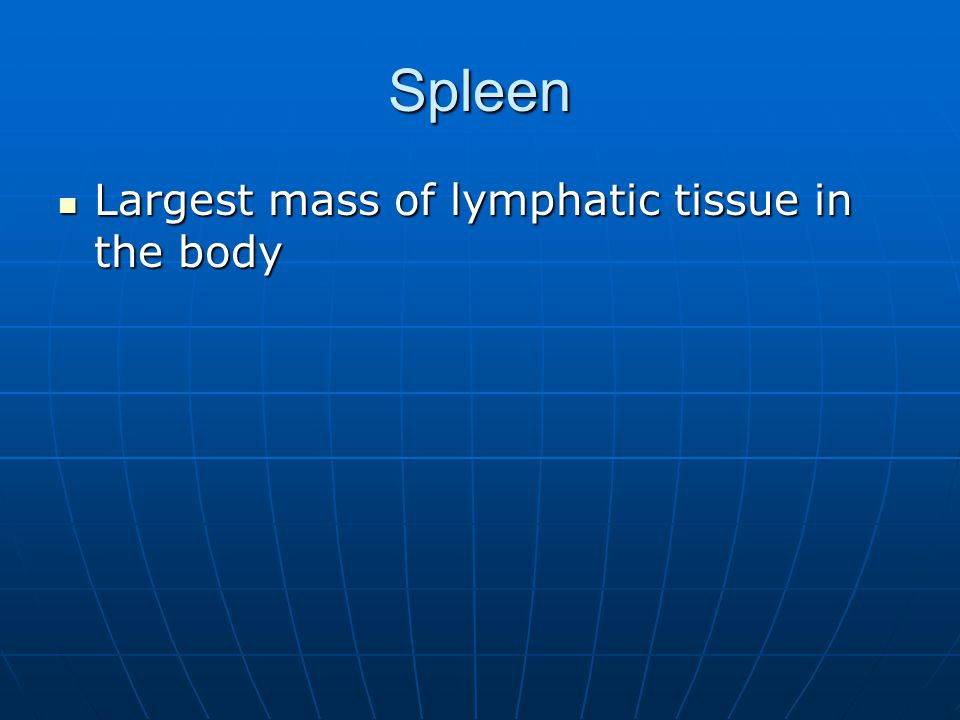 Spleen Largest mass of lymphatic tissue in the body Largest mass of lymphatic tissue in the body