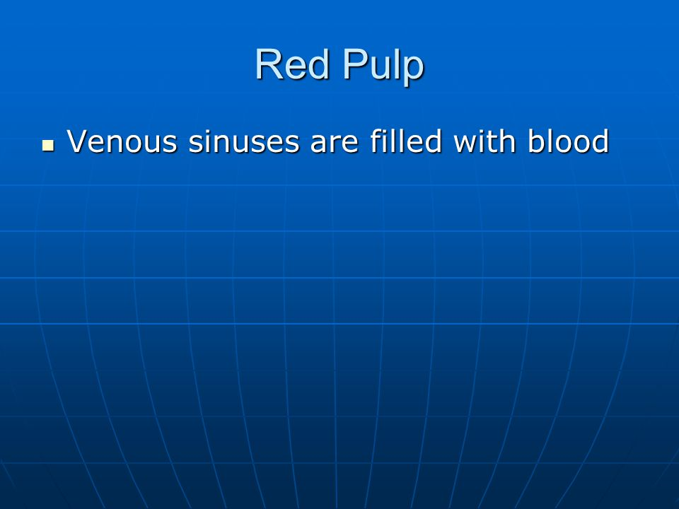 Red Pulp Venous sinuses are filled with blood Venous sinuses are filled with blood