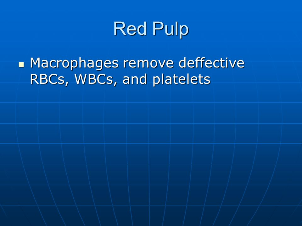 Red Pulp Macrophages remove deffective RBCs, WBCs, and platelets Macrophages remove deffective RBCs, WBCs, and platelets