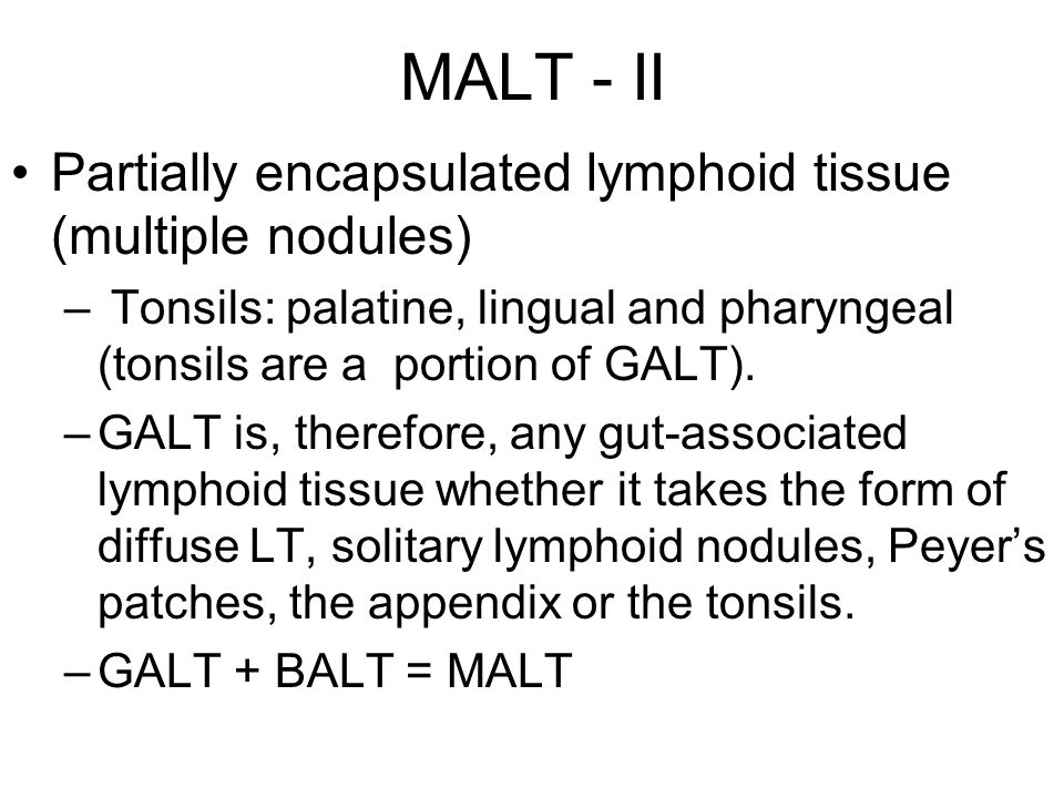 MALT - II Partially encapsulated lymphoid tissue (multiple nodules) – Tonsils: palatine, lingual and pharyngeal (tonsils are a portion of GALT). –GALT