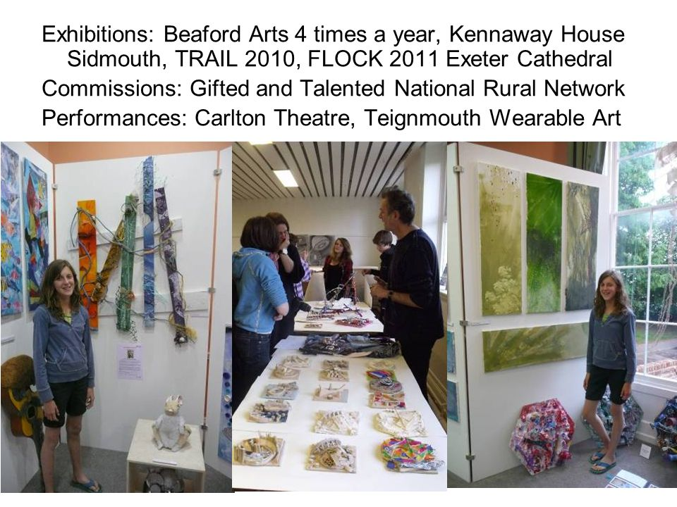 Exhibitions: Beaford Arts 4 times a year, Kennaway House Sidmouth, TRAIL 2010, FLOCK 2011 Exeter Cathedral Commissions: Gifted and Talented National Rural Network Performances: Carlton Theatre, Teignmouth Wearable Art