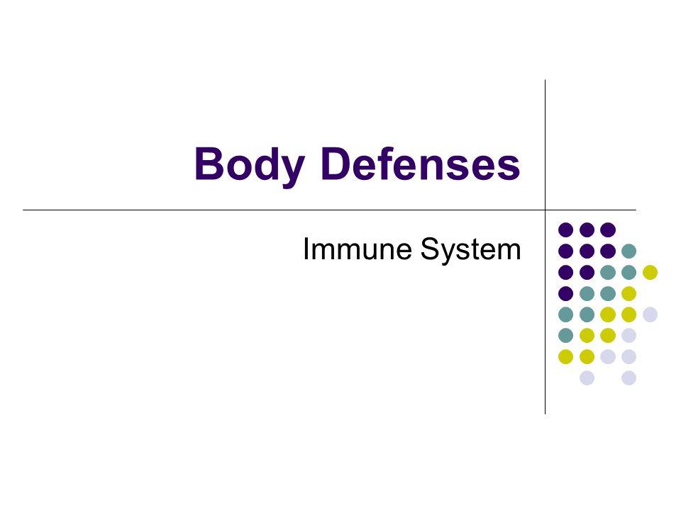 Immune Defenses Immunity involves innate and acquired defenses.