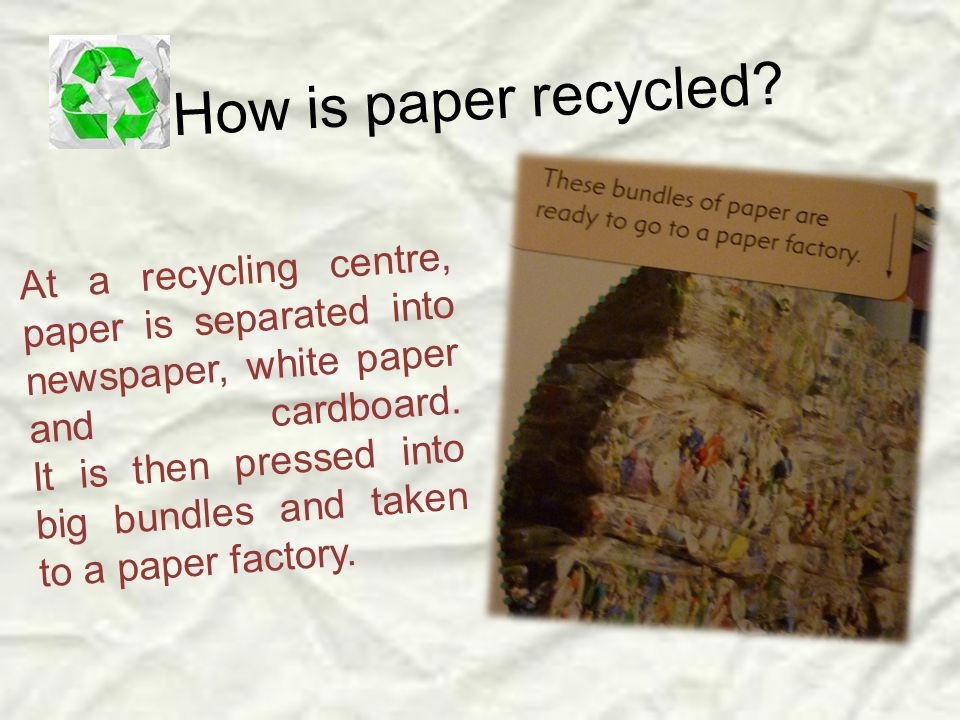 At a recycling centre, paper is separated into newspaper, white paper and cardboard.