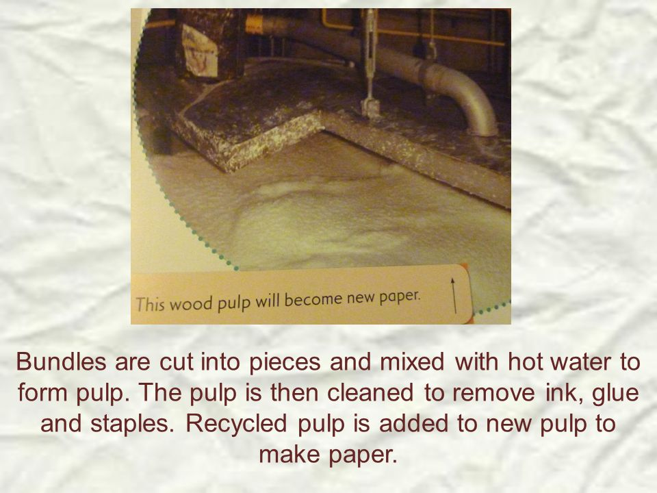 Bundles are cut into pieces and mixed with hot water to form pulp. The pulp is then cleaned to remove ink, glue and staples. Recycled pulp is added to