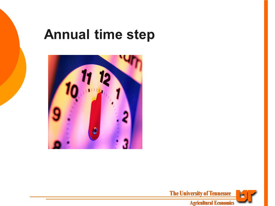 Annual time step