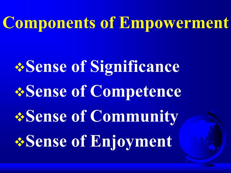 Components of Empowerment  Sense of Significance  Sense of Competence  Sense of Community  Sense of Enjoyment