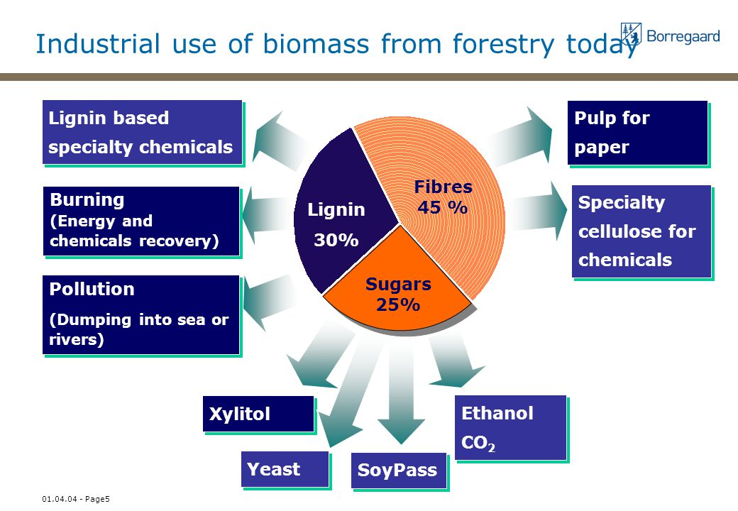 01.04.04 - Page5 Industrial use of biomass from forestry today Lignin based specialty chemicals Burning (Energy and chemicals recovery) Pollution (Dumping into sea or rivers) Pollution (Dumping into sea or rivers) Lignin 30% Fibres 45 % Sugars 25% Pulp for paper Xylitol Yeast Ethanol CO 2 Specialty cellulose for chemicals SoyPass