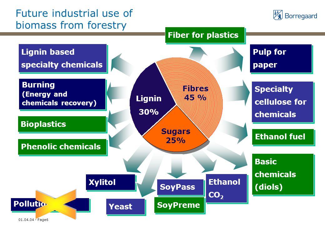 01.04.04 - Page6 Future industrial use of biomass from forestry Lignin based specialty chemicals Burning (Energy and chemicals recovery) Lignin 30% Fibres 45 % Sugars 25% Pulp for paper Xylitol Yeast Ethanol CO 2 Specialty cellulose for chemicals SoyPass Bioplastics Ethanol fuel Basic chemicals (diols) Phenolic chemicals Pollution Fiber for plastics SoyPreme