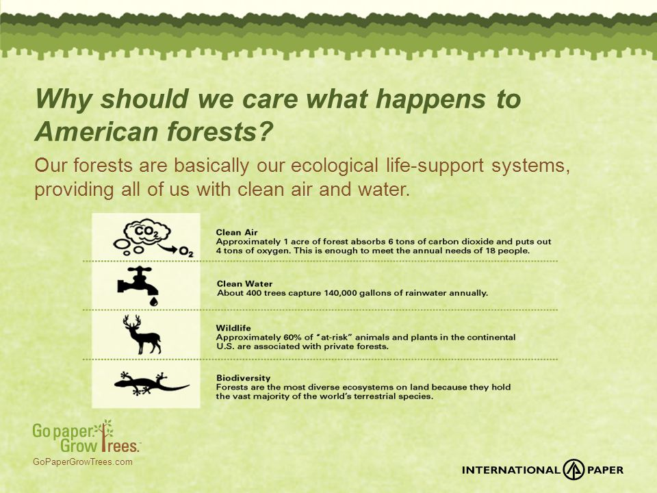 GoPaperGrowTrees.com Why should we care what happens to American forests? Our forests are basically our ecological life-support systems, providing all