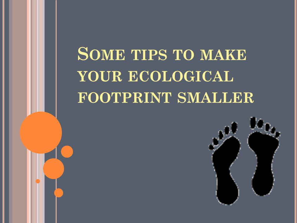 S OME TIPS TO MAKE YOUR ECOLOGICAL FOOTPRINT SMALLER