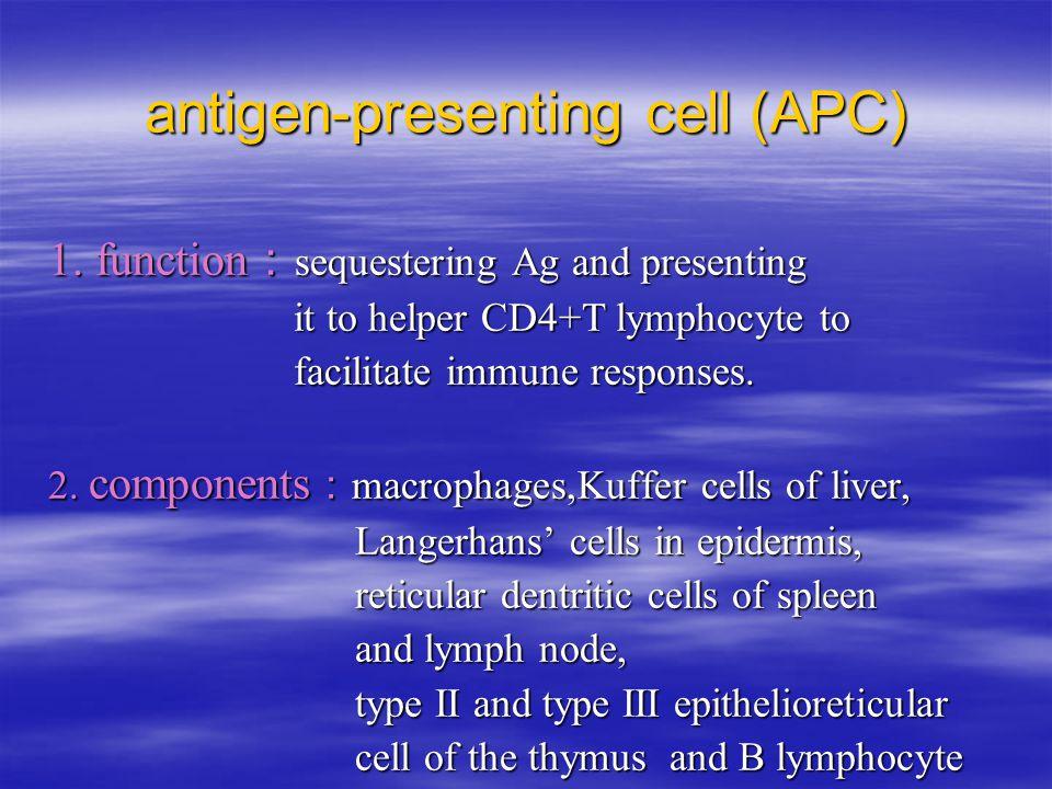 antigen-presenting cell (APC) 1.