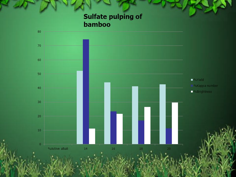 Sulfate pulping of bamboo