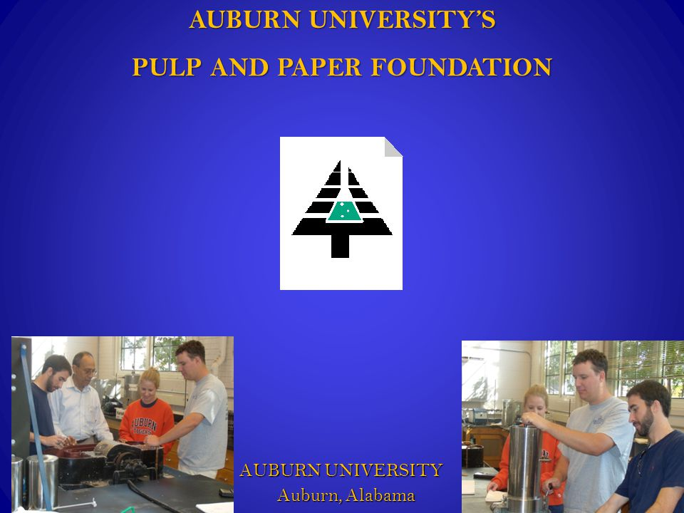 Questions that we will address: Auburn Pulp & Paper Foundation  What is the APPF's place in the pulp and paper industry.