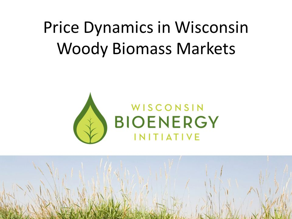 Price Dynamics in Wisconsin Woody Biomass Markets