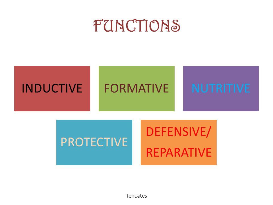 FUNCTIONS INDUCTIVEFORMATIVENUTRITIVE PROTECTIVE DEFENSIVE/ REPARATIVE Tencates