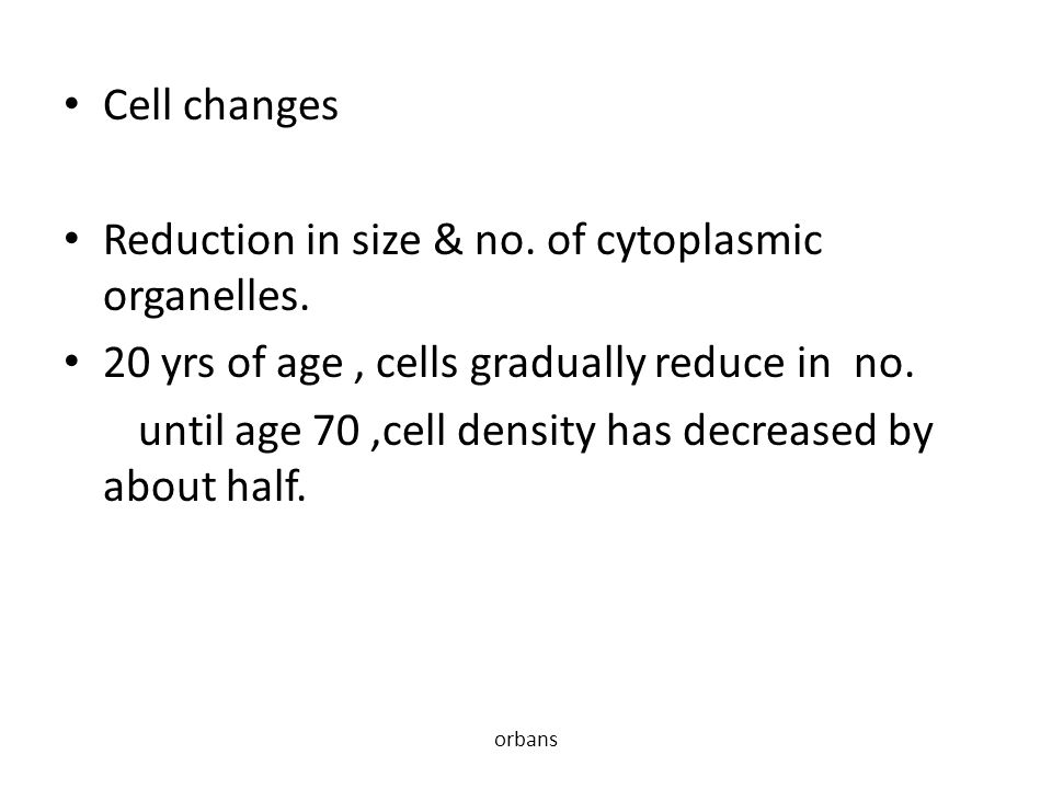 Cell changes Reduction in size & no. of cytoplasmic organelles. 20 yrs of age, cells gradually reduce in no. until age 70,cell density has decreased b