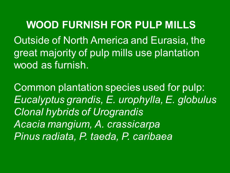 WOOD FURNISH FOR PULP MILLS Outside of North America and Eurasia, the great majority of pulp mills use plantation wood as furnish. Common plantation s