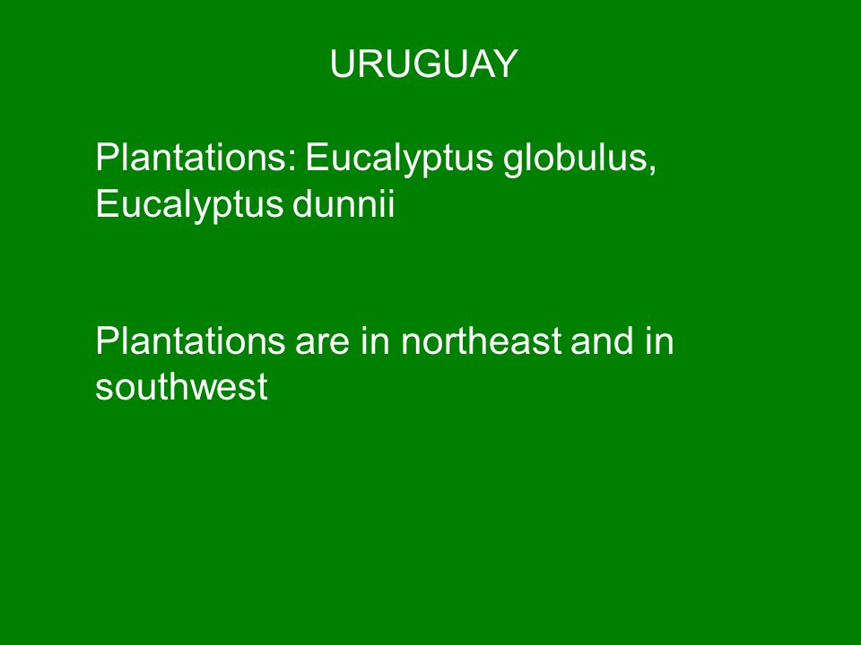 URUGUAY Plantations: Eucalyptus globulus, Eucalyptus dunnii Plantations are in northeast and in southwest