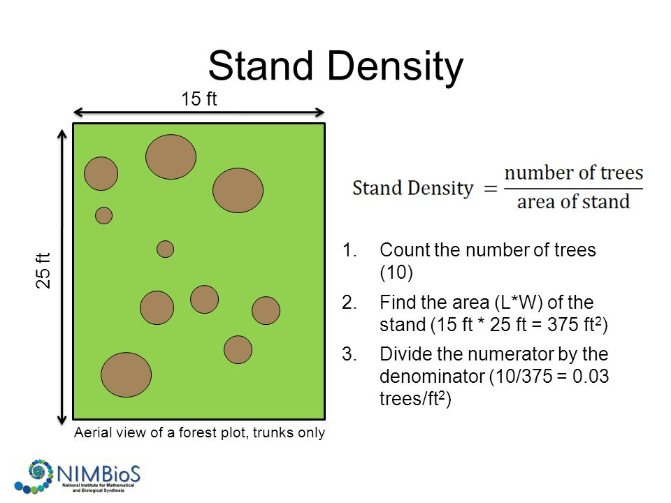Stand Density 1.Count the number of trees (10) 2.Find the area (L*W) of the stand (15 ft * 25 ft = 375 ft 2 ) 3.Divide the numerator by the denominator (10/375 = 0.03 trees/ft 2 ) 15 ft 25 ft Aerial view of a forest plot, trunks only