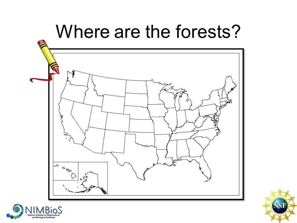 Where are the forests?